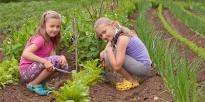 Sisters in vegetable garden