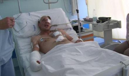 Trentino, uomo ferito da un orso. Non è grave, ma è polemica