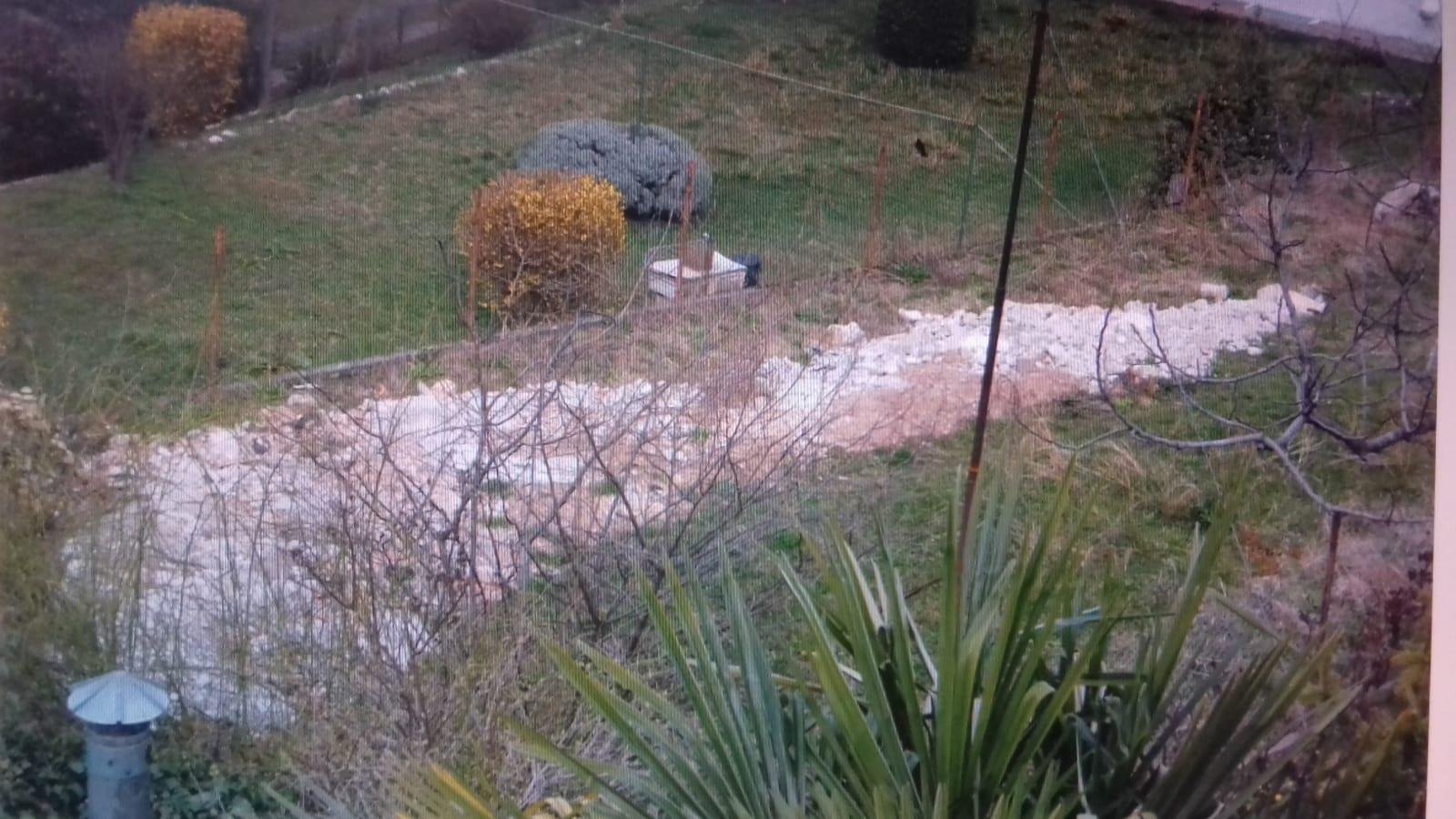 Un deposito di inerti dentro un giardino privato ma dopo - Altezza alberi giardino privato condominio ...
