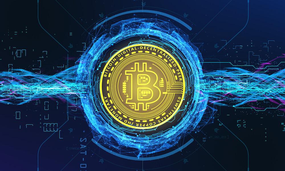 case bitcoin portafoglio revisione